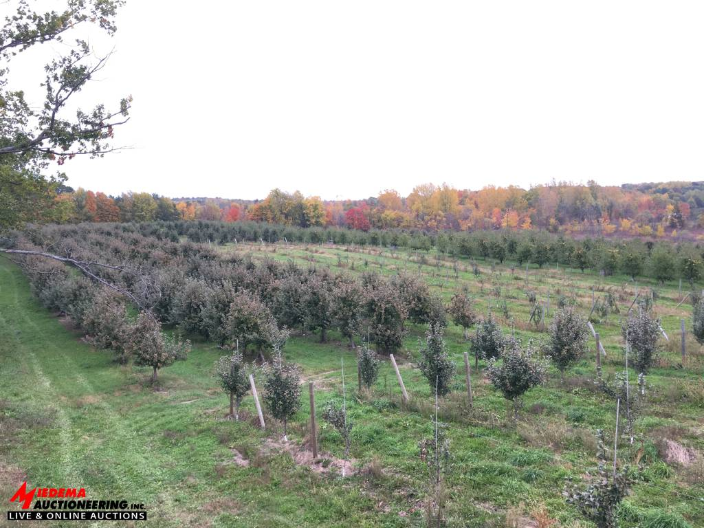orchard auction